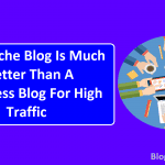 Niche Blog Is Much Better Than A Nicheless Blog For High Traffic
