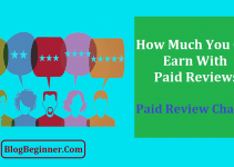 How Much You Can Earn With Paid Reviews