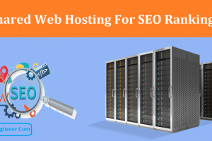 Does Shared Web Hosting Affect SEO Rankings