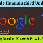Google Hummingbird Update: Everything Need to Know & How it Affect SEO