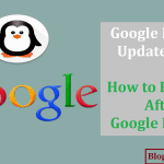 Google Penguin Update Guide: How to Recover After Google Penalty