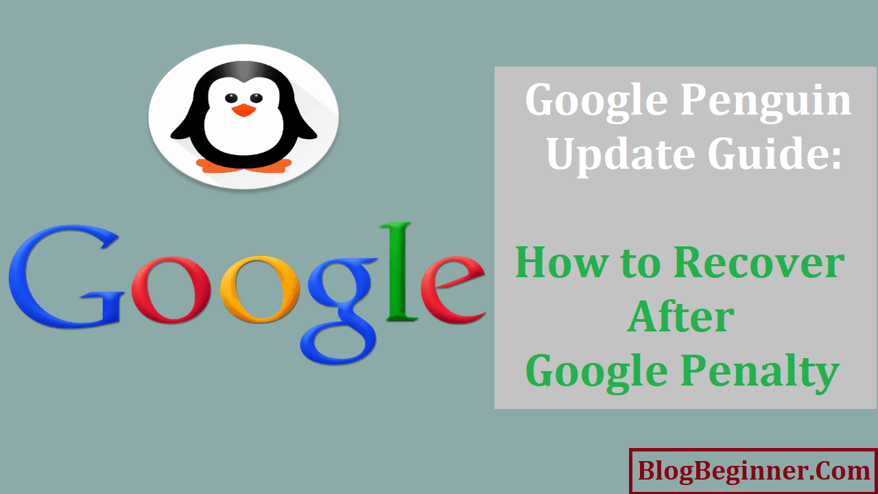 Google Penguin Update How to Recover After Penalty