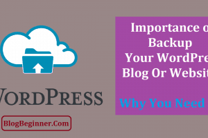 Importance of Backup Your WordPress Blog WebSite