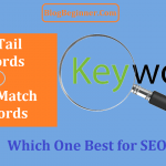 Long Tail Keywords vs Exact Match Keywords: Which Best for SEO