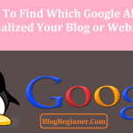 Panda or Penguin : How to Find Which Google Algorithm Penalized You