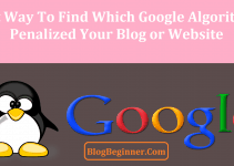 Panda or Penguin Find Which Google Algorithm Penalized